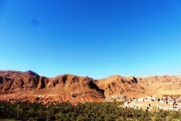 Maroc - Palmeraie de Tinghir