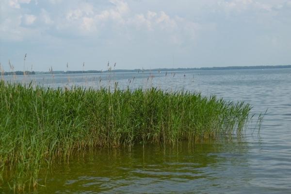 Pologne, Lac de Mazurie