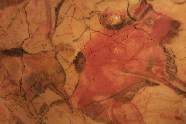 Grotte d'Altamira  Peintures rupestres
