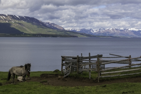 Islande & îles Féroé, Eyjafjordur
