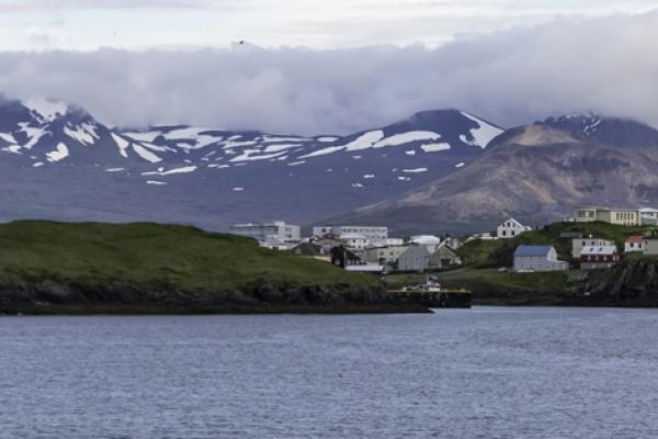 Islande & îles Féroé, île de Flatey, côte ouest