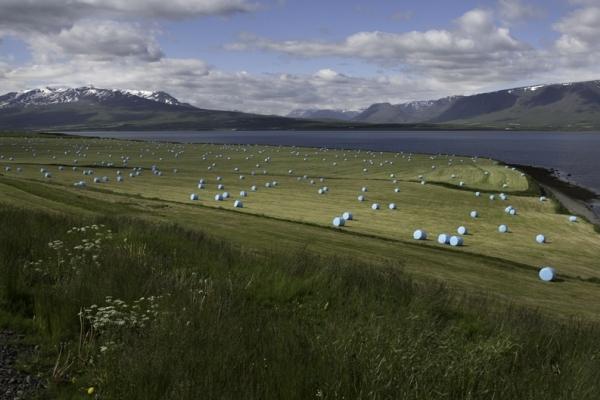 Islande & îles Féroé, Eyjafordur