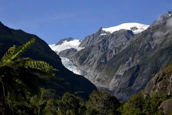 Nouvelle Zélande, Frantz Joseph Glacier
