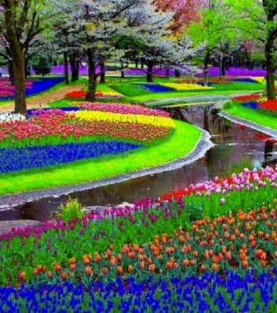 Parc floral de Keukenhof