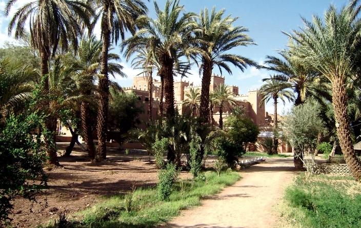 Maroc - Agdz