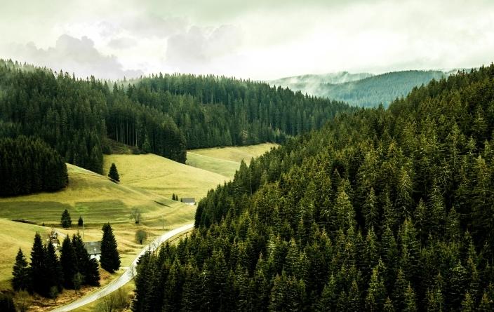 Forêt Noire - Furtwangen